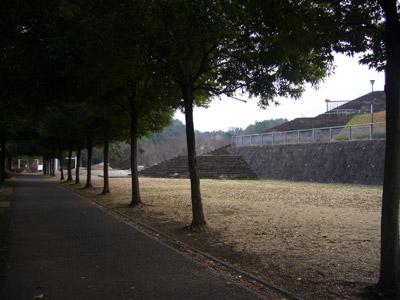 kyonpark3.jpg