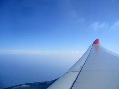 NWA A330 wing