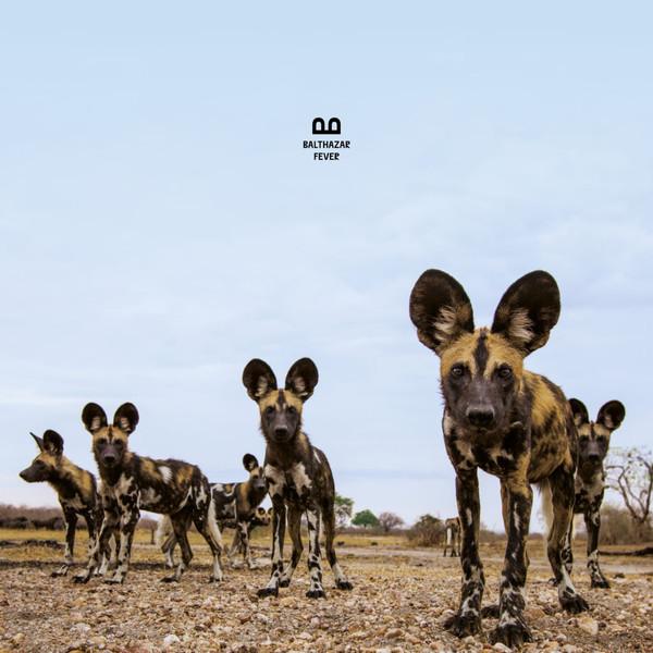 Balthazar (6) - Fever - vinyl record