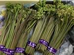 緊急速報!山添村の山菜「蕨(ワラビ)」数量限定で登場です