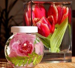 Консервированные цветы в глицерине, желатине, пропорция раствора