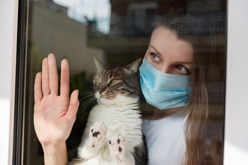 девушка в маске с котом
