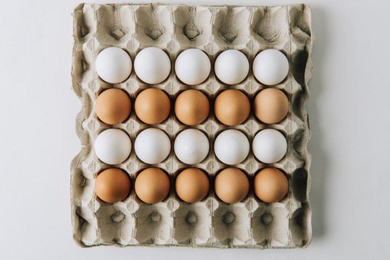 производство продуктов питания на дому