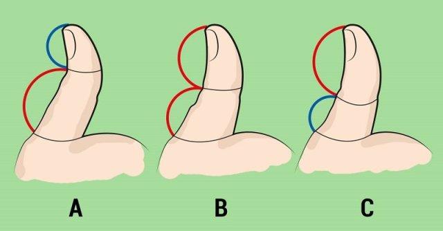 большой палец руки
