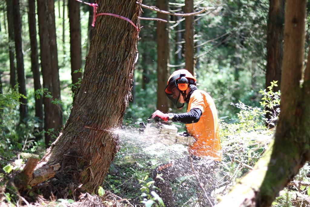 森とのつながりを体感するプログラム。