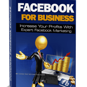 facebook for business - thick book