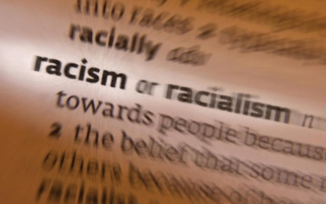 The thin line between racism and racialism