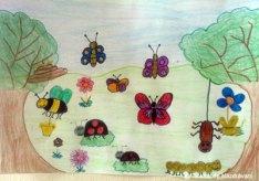 Cum să desenez albine, fluturi, buburuze, păianjen