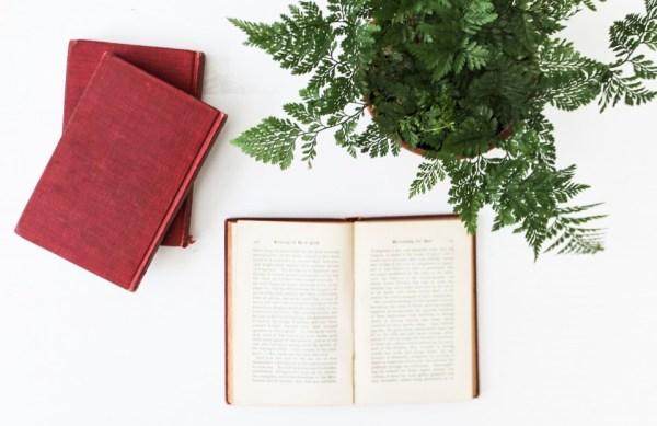 Découvrez les 5 livres qui ont changé ma vie d'entrepreneure⎟Talented Girls, conseils business et ondes positives pour les femmes entrepreneures !
