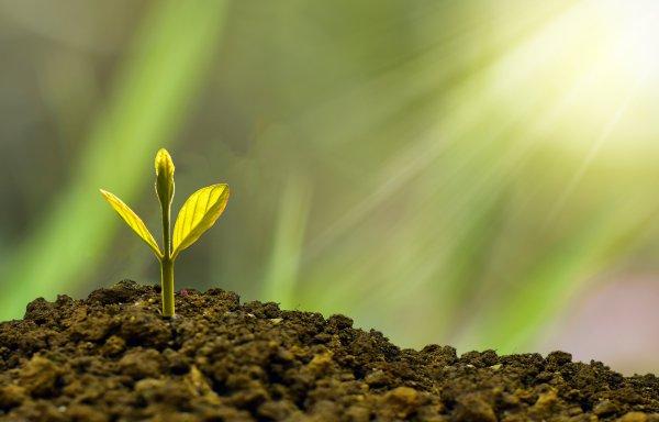 Introducción al Financiamiento Climático y sus Tendencias