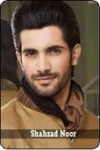 shahzad noor
