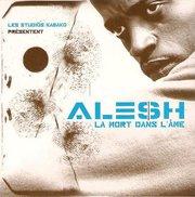 Ma lutte de Alesh