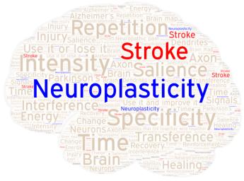 Neuroplasticity Word Art 2