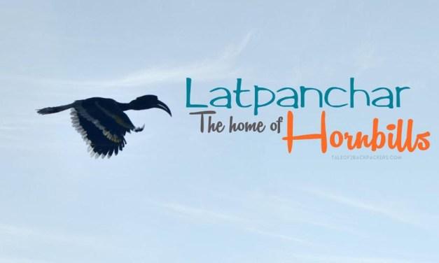 Latpanchar – The Home of Hornbills