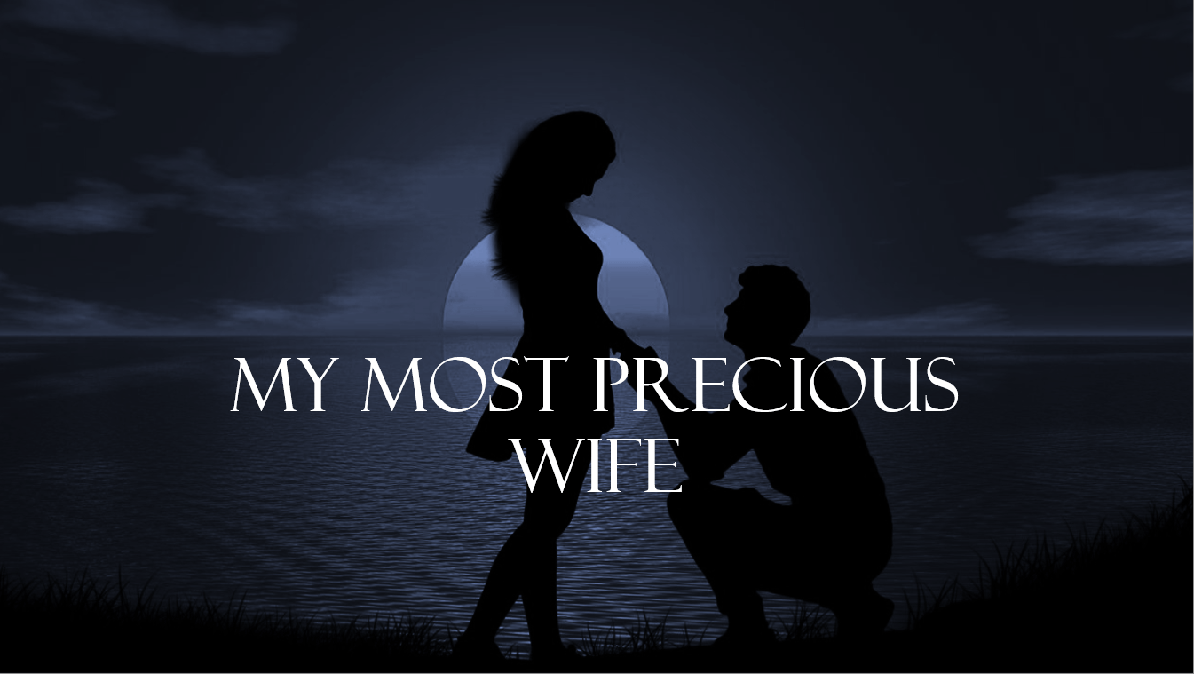 My Most Precious Wife Novel Cover Image