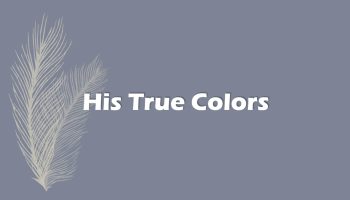 His True Colors Novel Cover Image