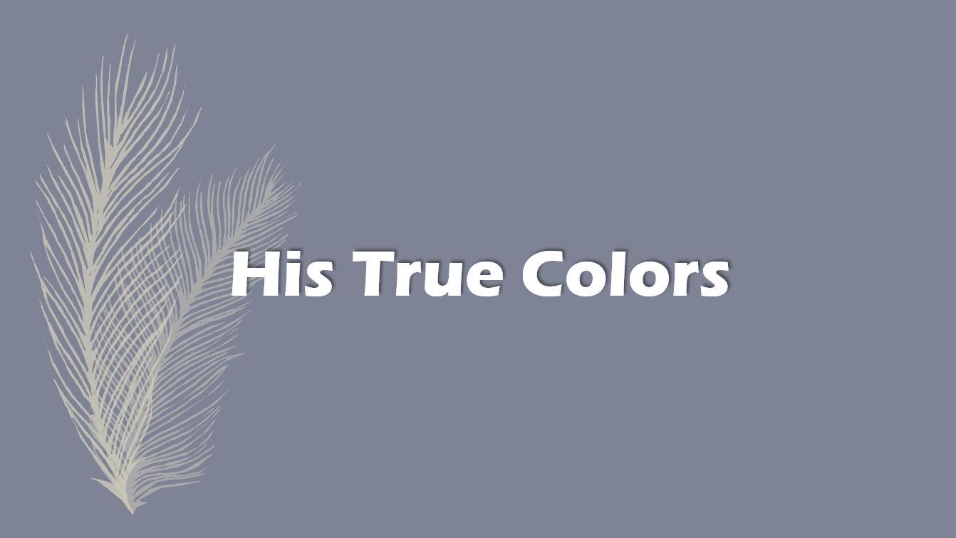 Hans sande farver roman Kapitel 2797 - 2799 - XH Tales