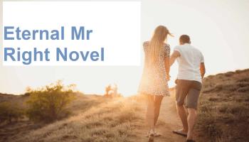 Eternal Mr Right Novel