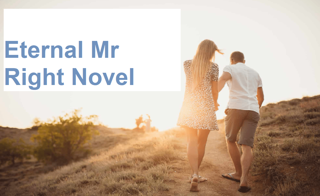 Eternal Mr Right Novel