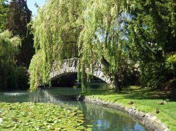 A peaceful city park