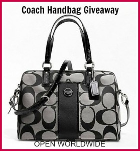 Coach Handbag  Blk grey
