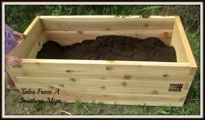 soil raised bed garden veggies