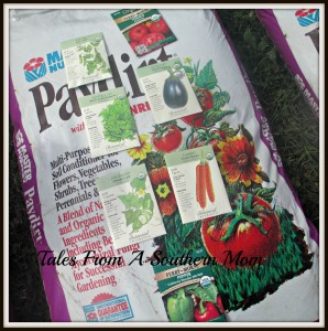 planting seeds soil