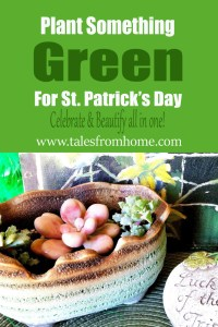 Plant Something Green For St Patrick's Day! Celebrate and Beautify all in one