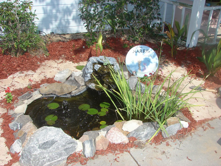 Home Improvement goals for 2019, DIy fish pond we put in a few years ago