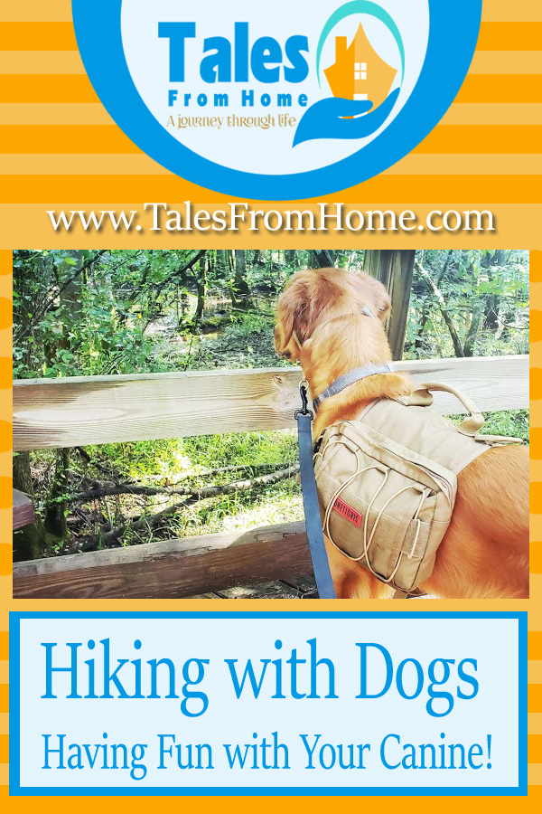 Hiking With Your Dog and Enjoying Nature with your Canine Companion #hiking #dogs #familypets #pets #puppy #hikingandcamping #outdoorlife #outdoorfun