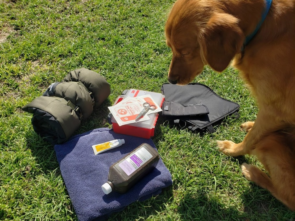 Creating an emergency kit for your dog