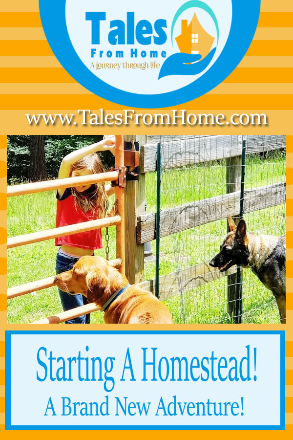 Starting a Homestead, A brand new adventure! #family #familylife #kids #selfsufficiency #homesteading #moving #familyadventure #lifestyle #countrylifestyle