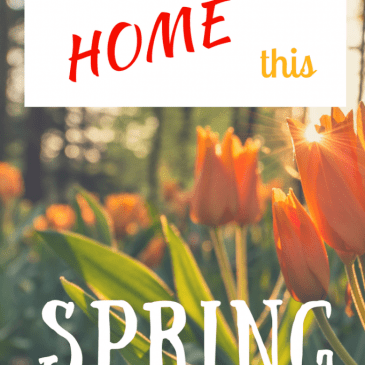 Ideas to brighten up your home this Spring