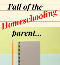 The rise and fall of the Homeschooling Parent