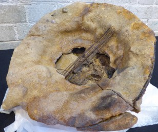 World War Two helmet dug up from Saunton Sands where troops prepared for D-Day