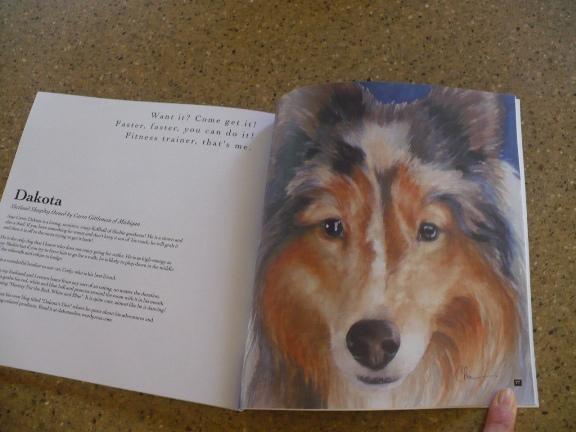 Doggitude giveaway