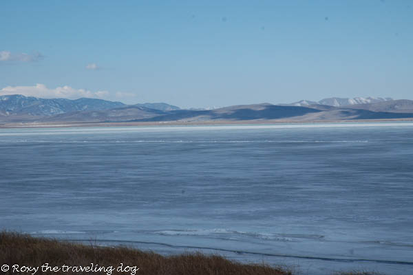 Utah Lake, thursday thoughts with Torrey