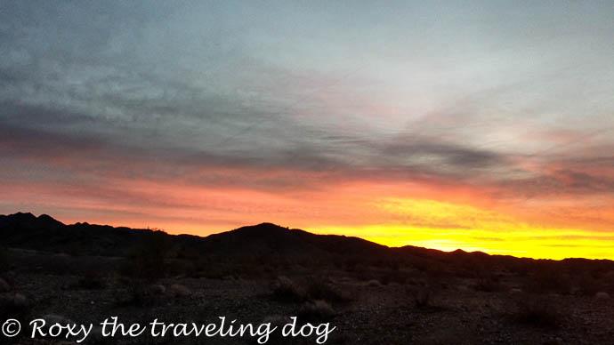watching the sunrise, desert sunrise
