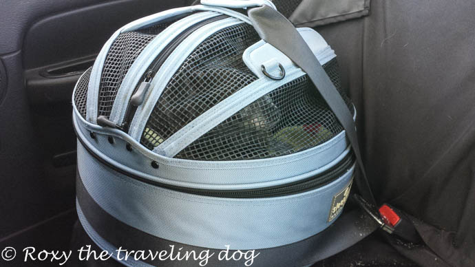 How to have the safest traveling dog, sleepyPod