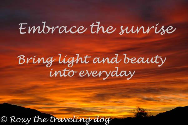The art of Mother Earth, sunrise, desert