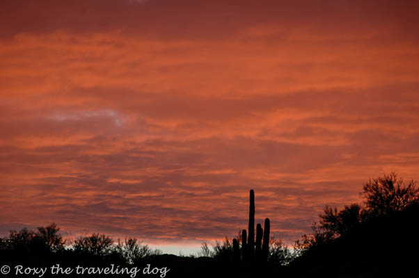 Wickenburg desert photos, clouds, sunsets,desert