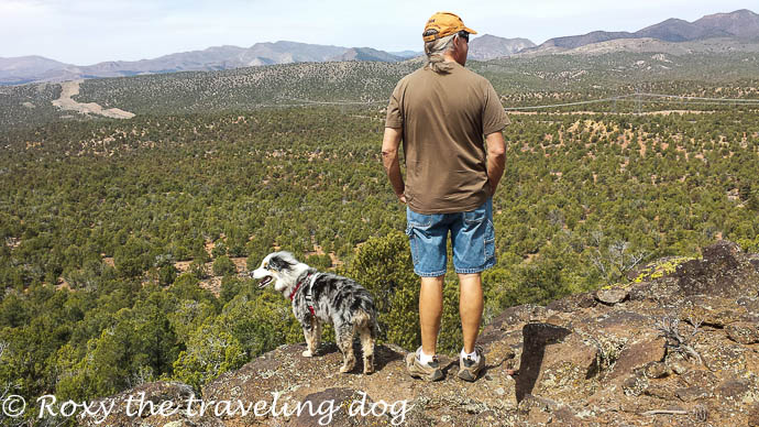 In the wilds again, hiking in the desert with dogs