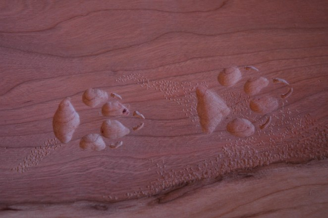 Tracks detail on cherry and juniper table