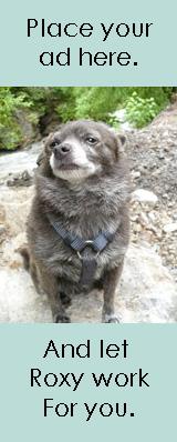 Sponsor/PR info for Roxy the traveling dog
