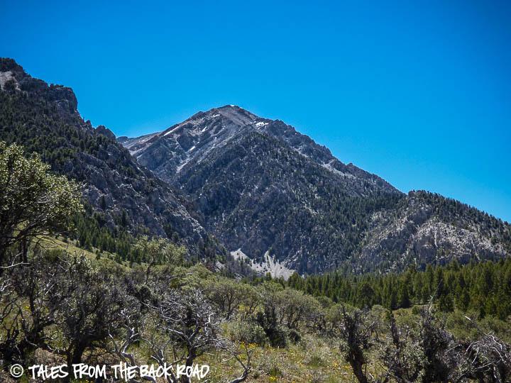 Mt. Borah hike