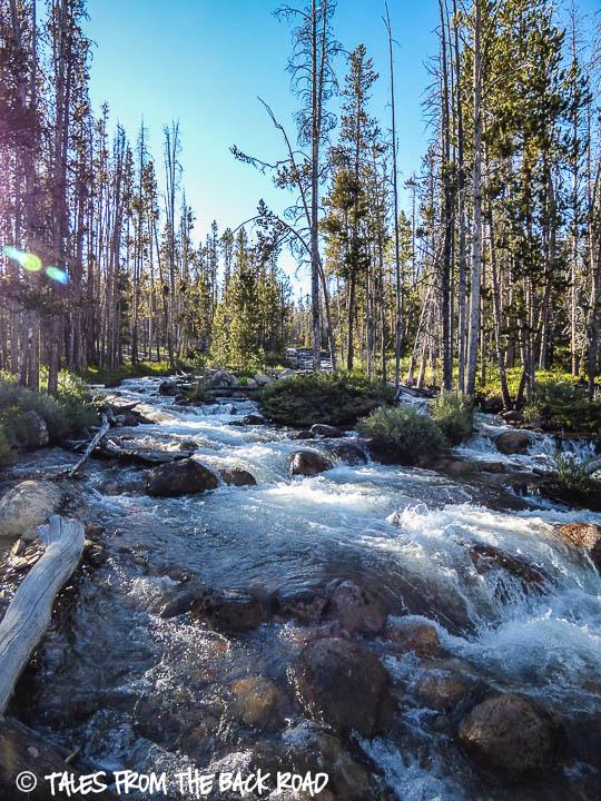 Hell Roaring creek, Idaho