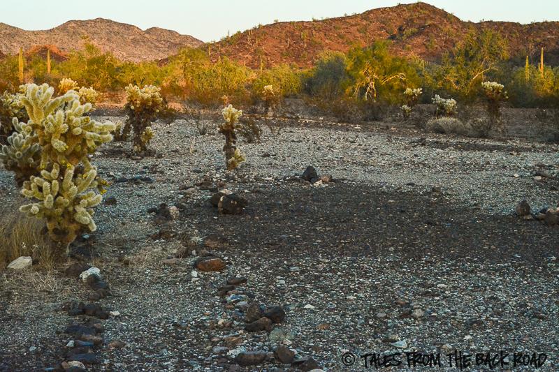 General Patton WW2 and the Arizona desert