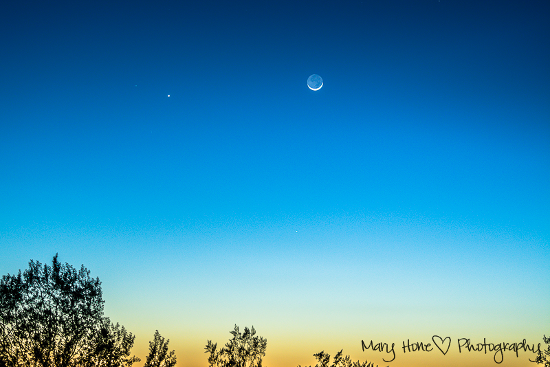 Moon and Venus at sunset