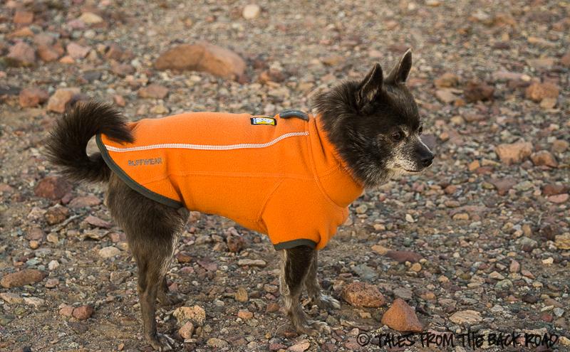 Ruffwear climate changer jacket