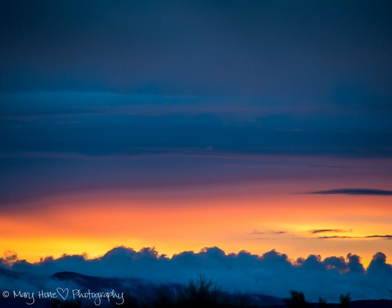 After the desert rain. Sunset